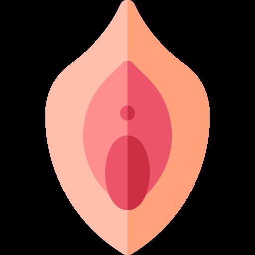 vagina(1)